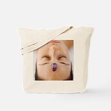 Healing crystal Tote Bag