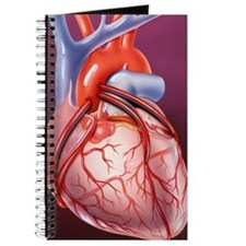 Heart bypass grafts Journal