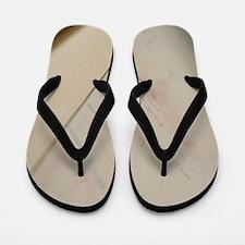 Height measurement Flip Flops