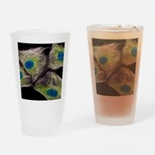 HeLa culture cells Drinking Glass