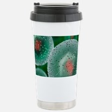 Herpes virus Travel Mug