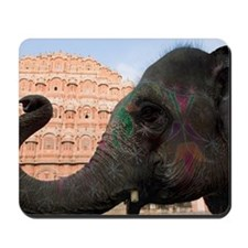 Close-up of an elephant in front of a pa Mousepad
