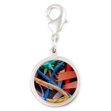 Household dust Silver Round Charm