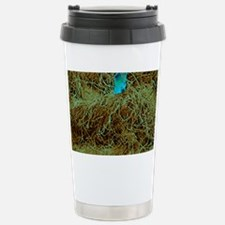 Household dust Stainless Steel Travel Mug