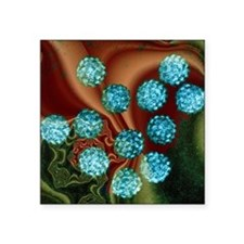 "Human papilloma viruses, TE Square Sticker 3"" x 3"""