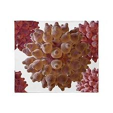 Human papilloma virus particles, art Throw Blanket