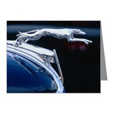 Greyhound hood ornament on c Note Cards (Pk of 10)