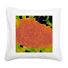 Human papilloma virus particl Square Canvas Pillow