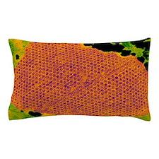 Human papilloma virus particles, TEM Pillow Case