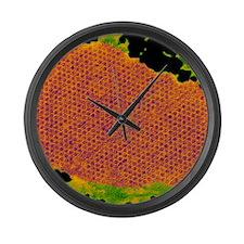 Human papilloma virus particles,  Large Wall Clock