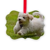 Havanese dog Ornaments