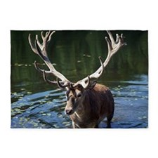 Red Deer coming out of water. 5'x7'Area Rug
