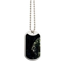 SwanWaterReflections Dog Tags