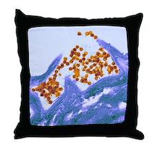 Human papilloma virus particles, TEM Throw Pillow