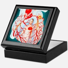Illustration of heart showing the cau Keepsake Box