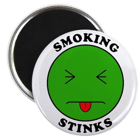 Smoking Stinks Magnet