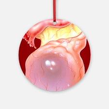 Illustration of an ovarian (follicu Round Ornament