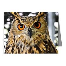 Owl with orange eyes Note Cards (Pk of 20)