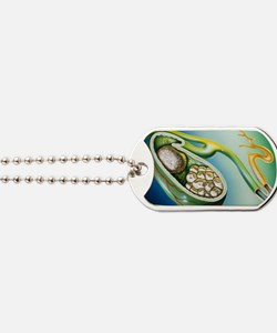 Illustration of stones in the gall bladde Dog Tags