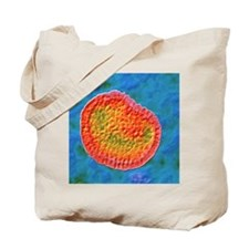 Influenza virus Tote Bag