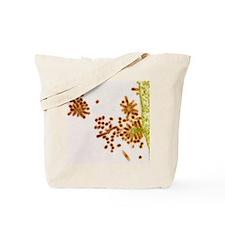 Influenza viruses, TEM Tote Bag