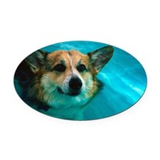 Dog swimming in pool Oval Car Magnet