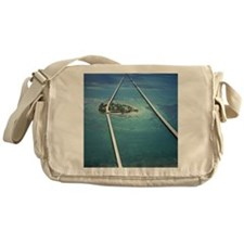17 Mile Bridge Messenger Bag