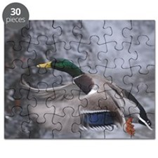 Flying duck Puzzle