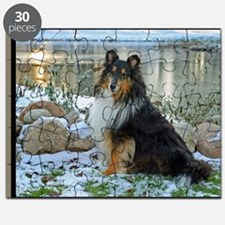 Tri-Color Sheltie Puzzle