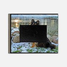 Tri-Color Sheltie Picture Frame