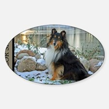Tri-Color Sheltie Sticker (Oval)