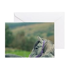 Horse looking back Greeting Card