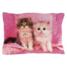 Two Kittens Sitting on a Pink Fluffy C Pillow Case