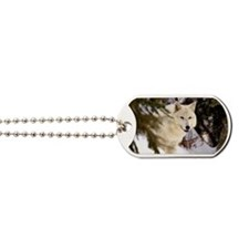 Wolf Stare Dog Tags