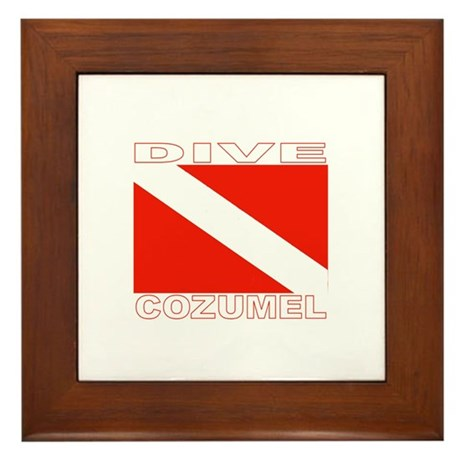 Dive Cozumel Framed Tile