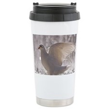 Close up of Pigeons. Travel Coffee Mug