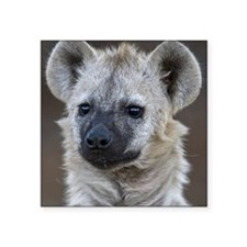 """Portrait of a young hyena Square Sticker 3"""" x 3"""""""