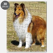 Collie Rough AF036D-028 Puzzle