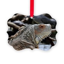 Close-Up Of Face Of Green Iguana Ornament