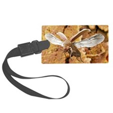 Woodworm beetle in flight Luggage Tag