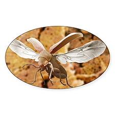 Woodworm beetle in flight Decal