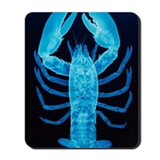 X-ray of lobster Mousepad