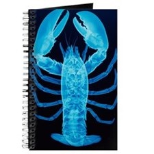 X-ray of lobster Journal
