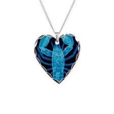 X-ray of lobster Necklace