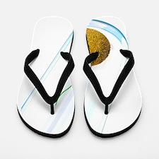 IVF, computer artwork Flip Flops
