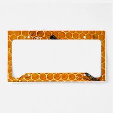 Worker honeybees License Plate Holder