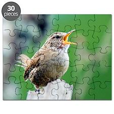 Wren calling Puzzle