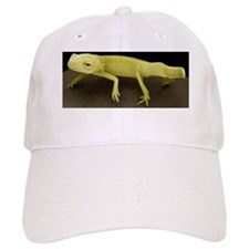 Young newt, SEM Baseball Cap