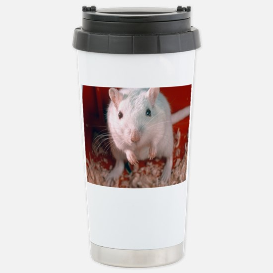 Laboratory gerbil Stainless Steel Travel Mug