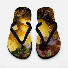 Yellow sponge Flip Flops